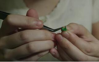 """在日本当医生有多难?先通过""""制作比5mm还小的寿司""""考试 @柚子木字幕组"""