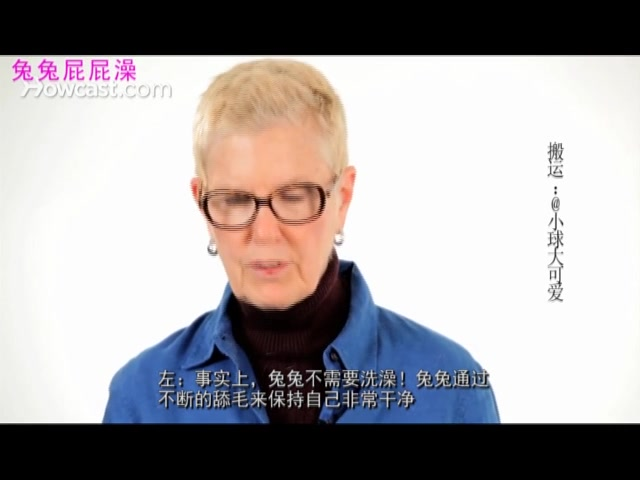 "【HRS翻译】兔兔需要洗澡吗?(怎样给兔兔洗一个""屁屁澡"")"