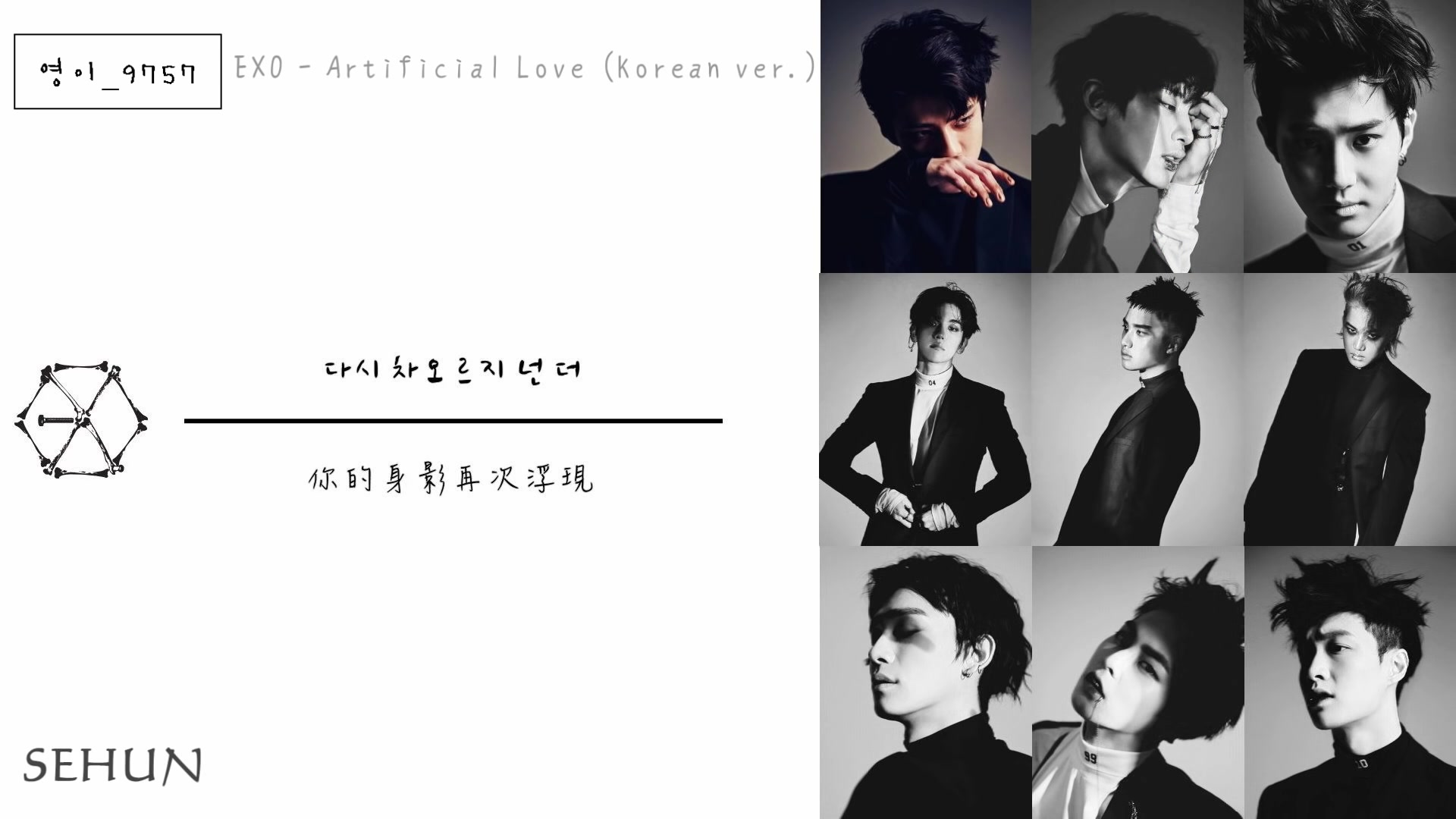 认声 中韩双字幕 Exo Artificial Love Korean Ver 哔哩哔哩