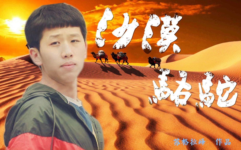 【王境泽】沙漠骆驼