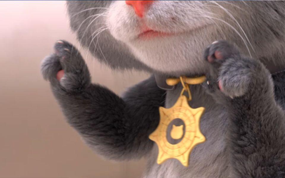 斑布猫banbokitty图片