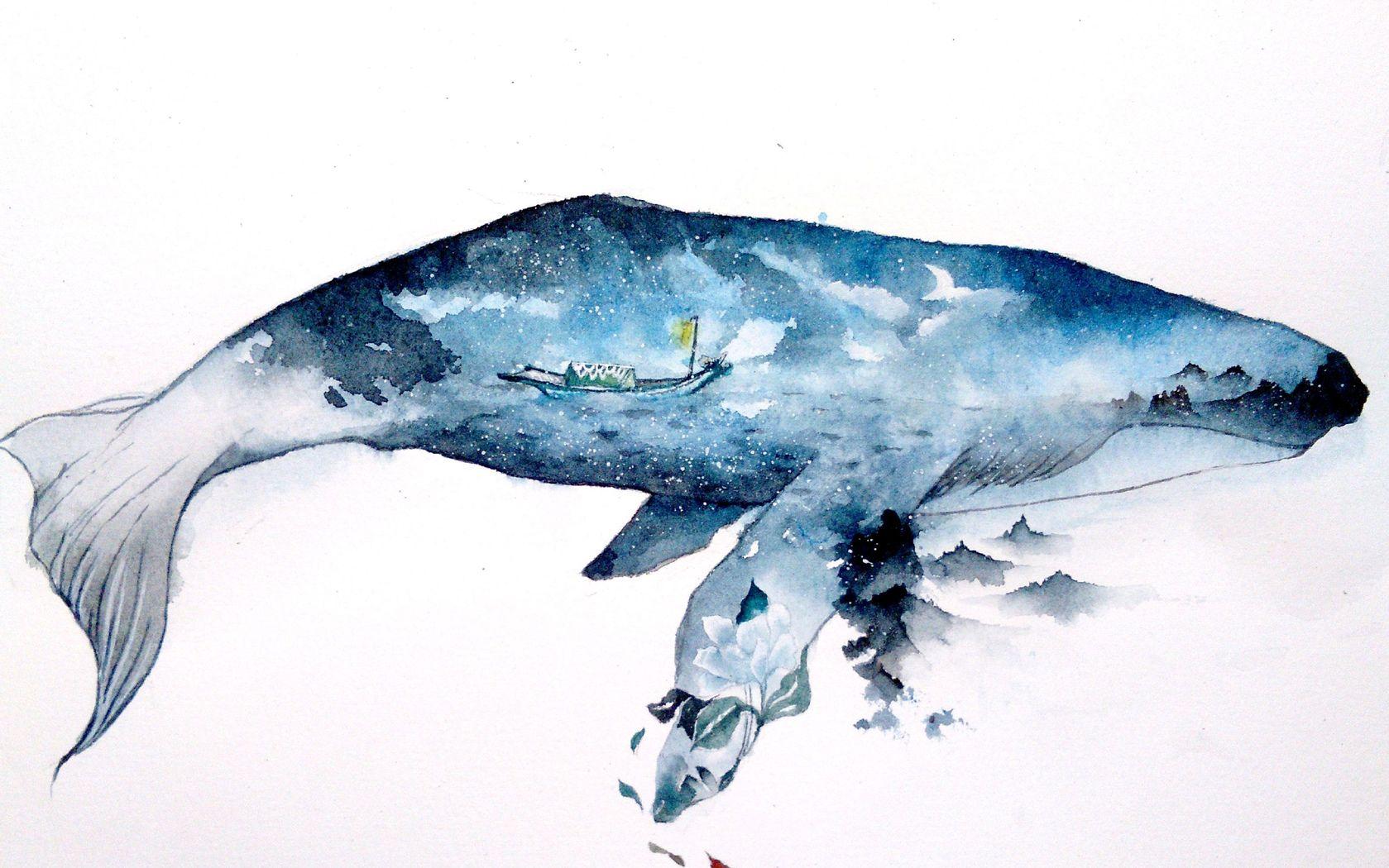 大鱼 海棠动漫
