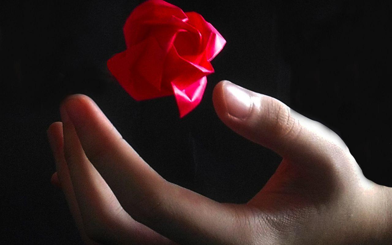 【折纸教程】七夕福利,表白神器上线,折朵玫瑰送给自己的对象吧