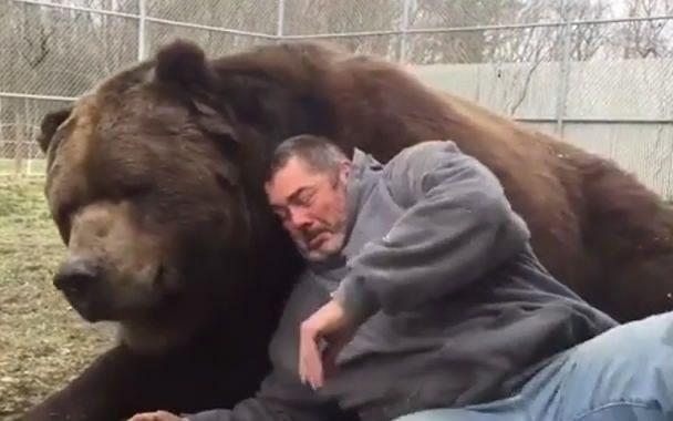 梦见别人杀熊流血