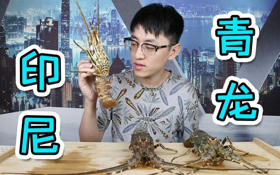 龙虾中的黄油蟹?跟它比澳龙都是弟弟!目前吃过最好吃的龙虾!!【重制版】