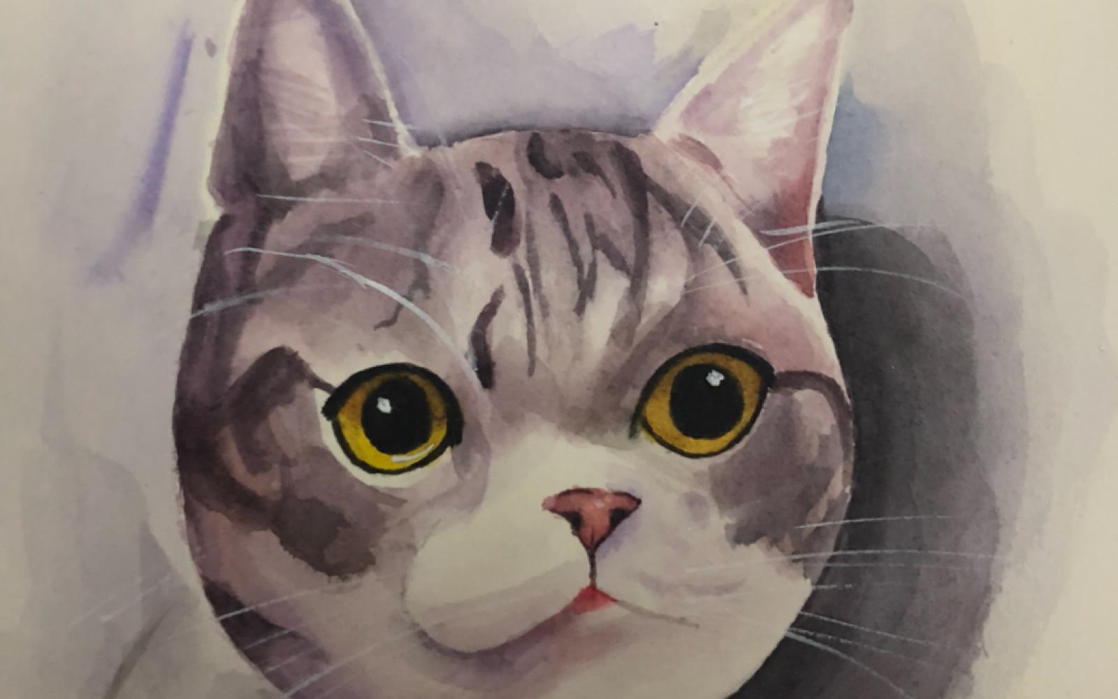水彩画临摹一只猫咪图片