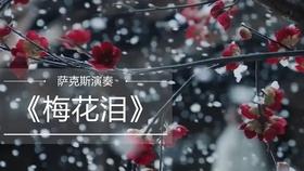 曲谱网秋恋