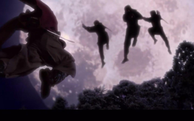 根据奠定日本忍者文化的名作《甲贺忍法帖》改编