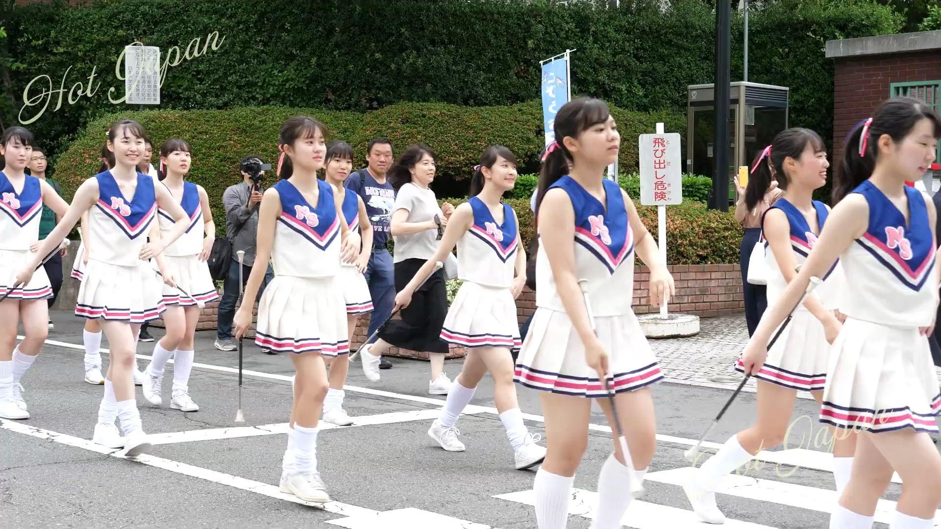 高等 丘 大学 学校 櫻 日本