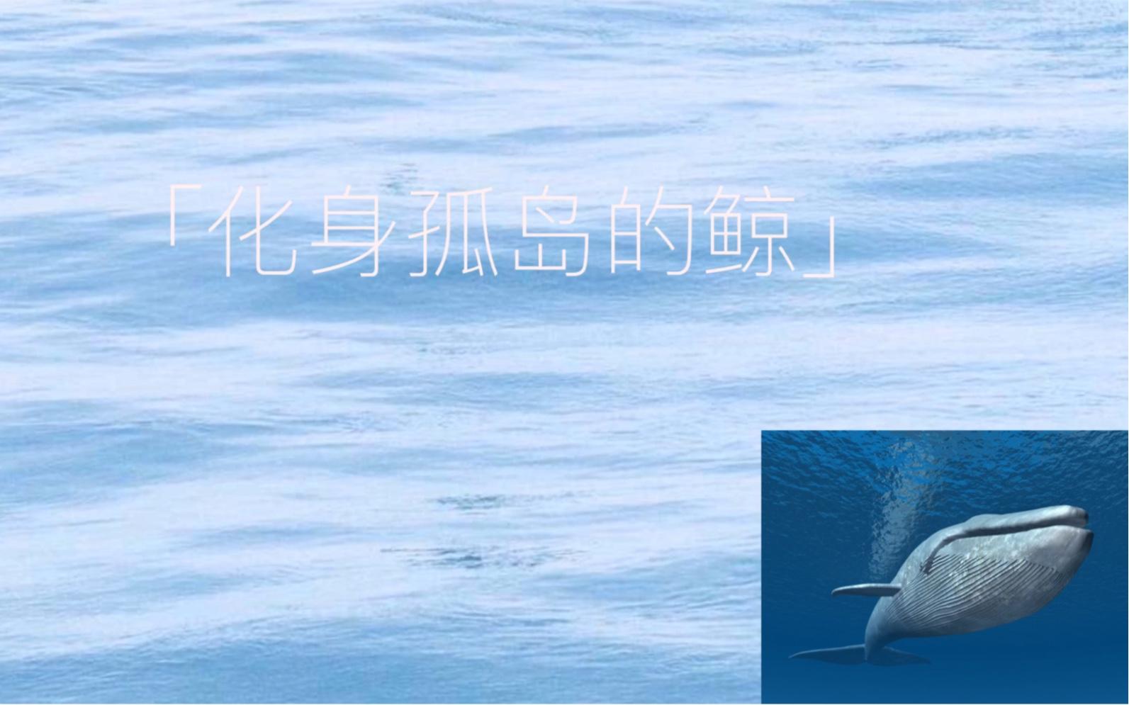 初中生翻唱《化身孤岛的鲸》声音与年龄反差大