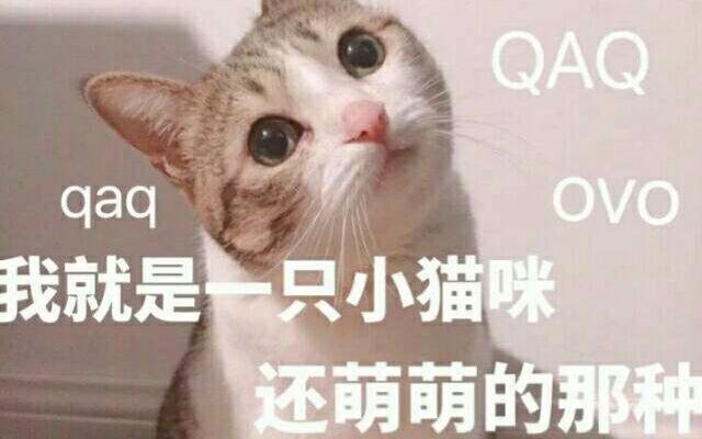 马狗avi色图片_【士兵小七】无良大叔与可爱小喵.avi