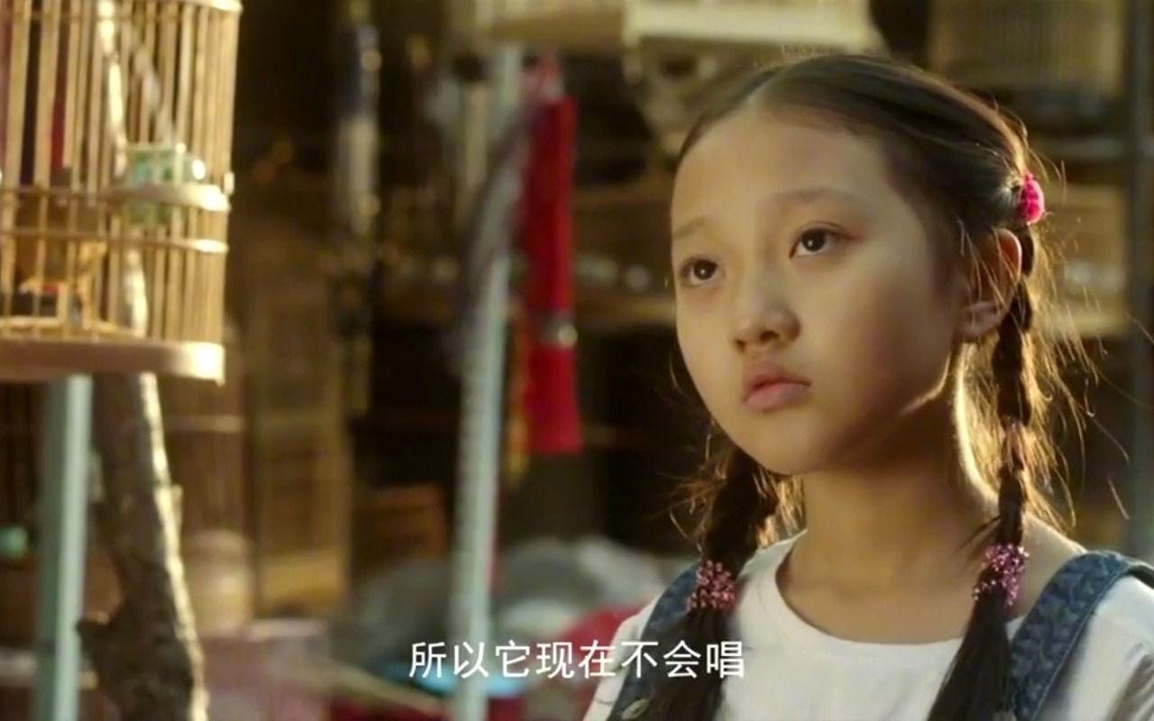 夜莺:像极了想养宠物的我!小女孩在集市对一只夜莺一见钟情
