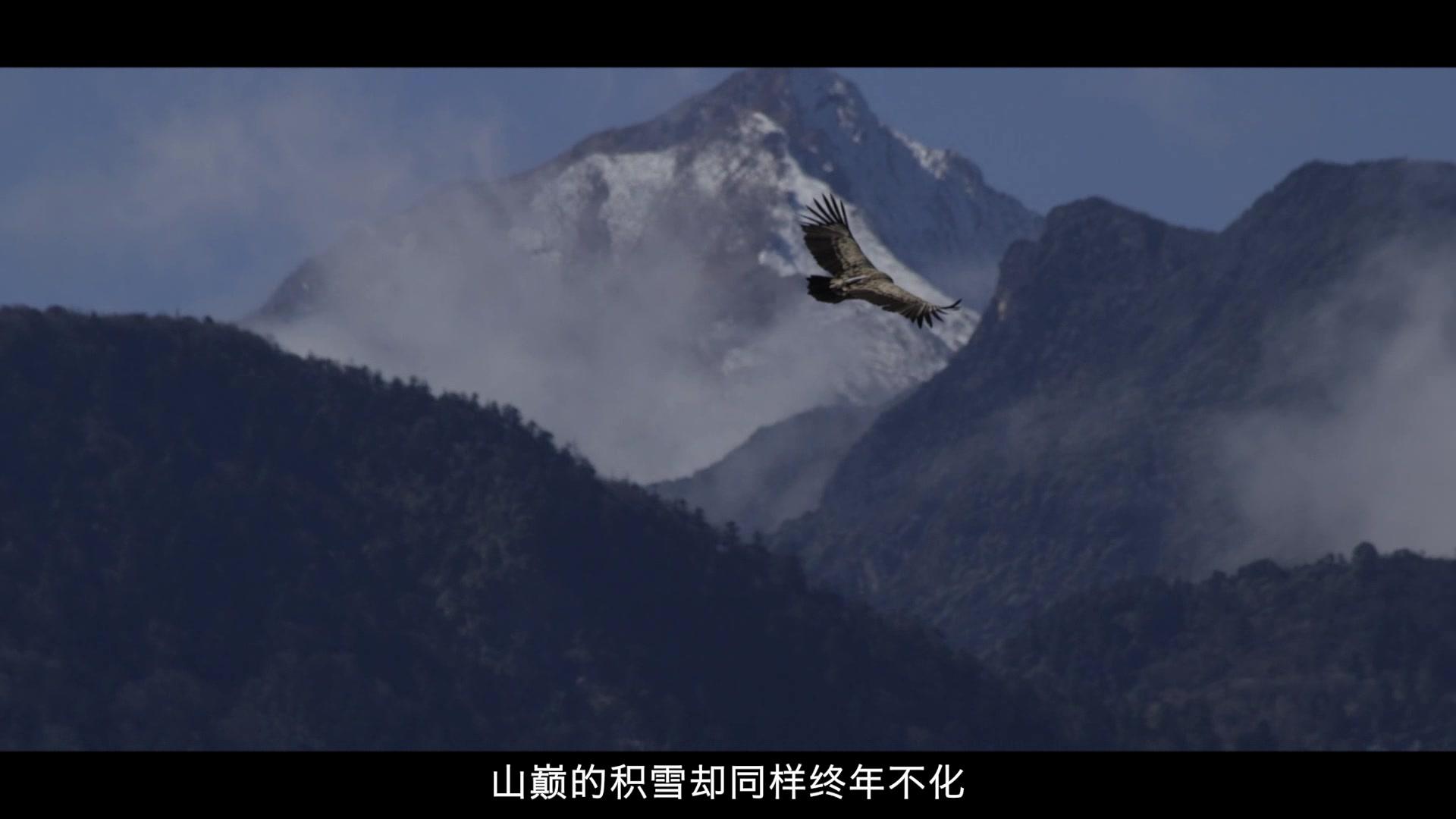 《香巴拉深处》官方2分钟宣传片发布!