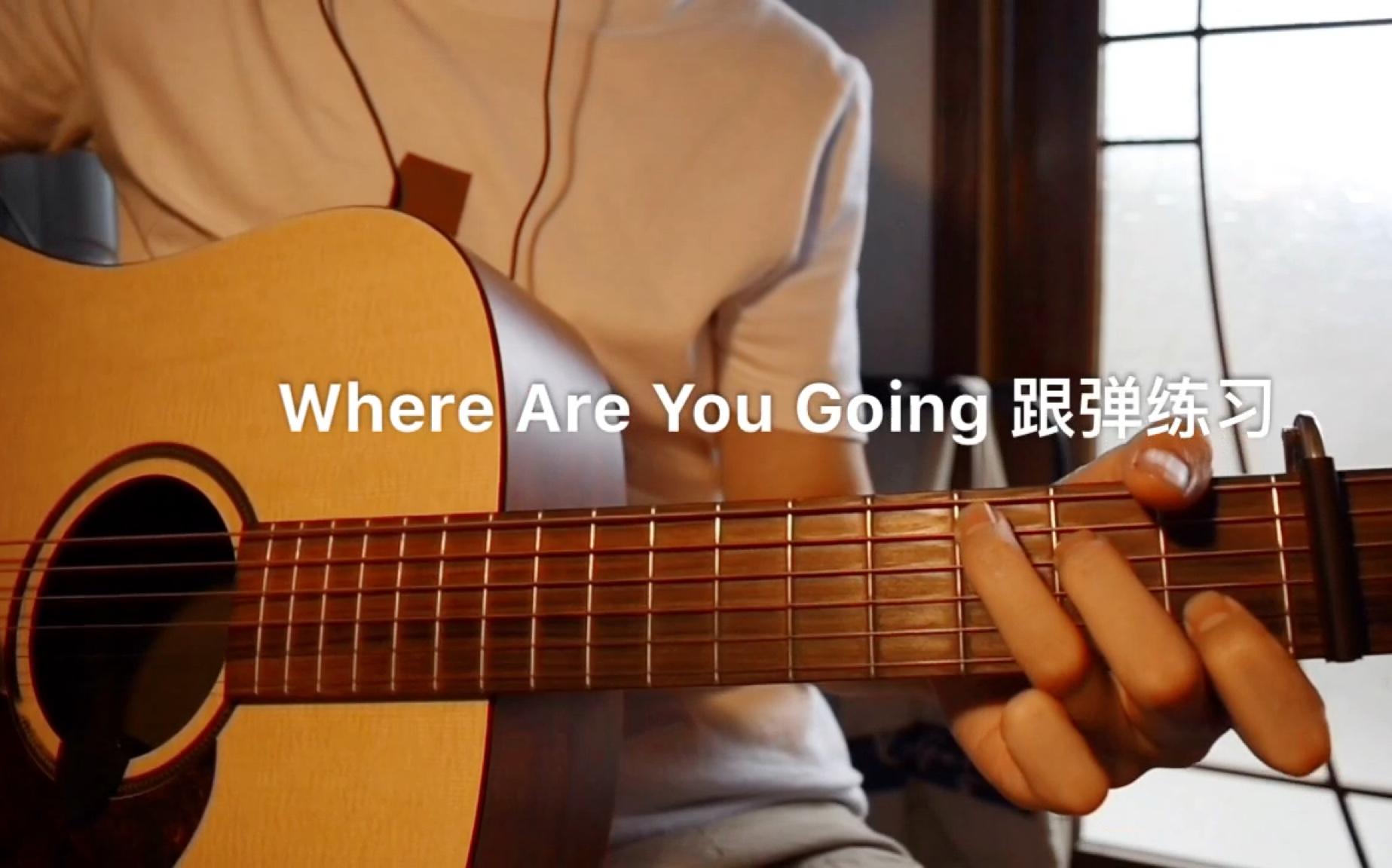 【不休习琴记】《where are you going》海龟先生 跟弹练习