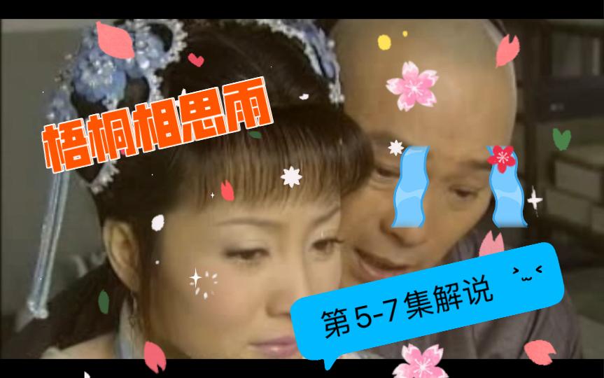 《梧桐相思雨》第5-7集解说