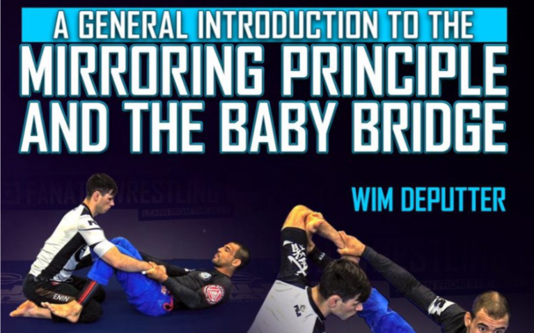 General Introduction To The Mirrorng Principle & The Baby Bridge part 4