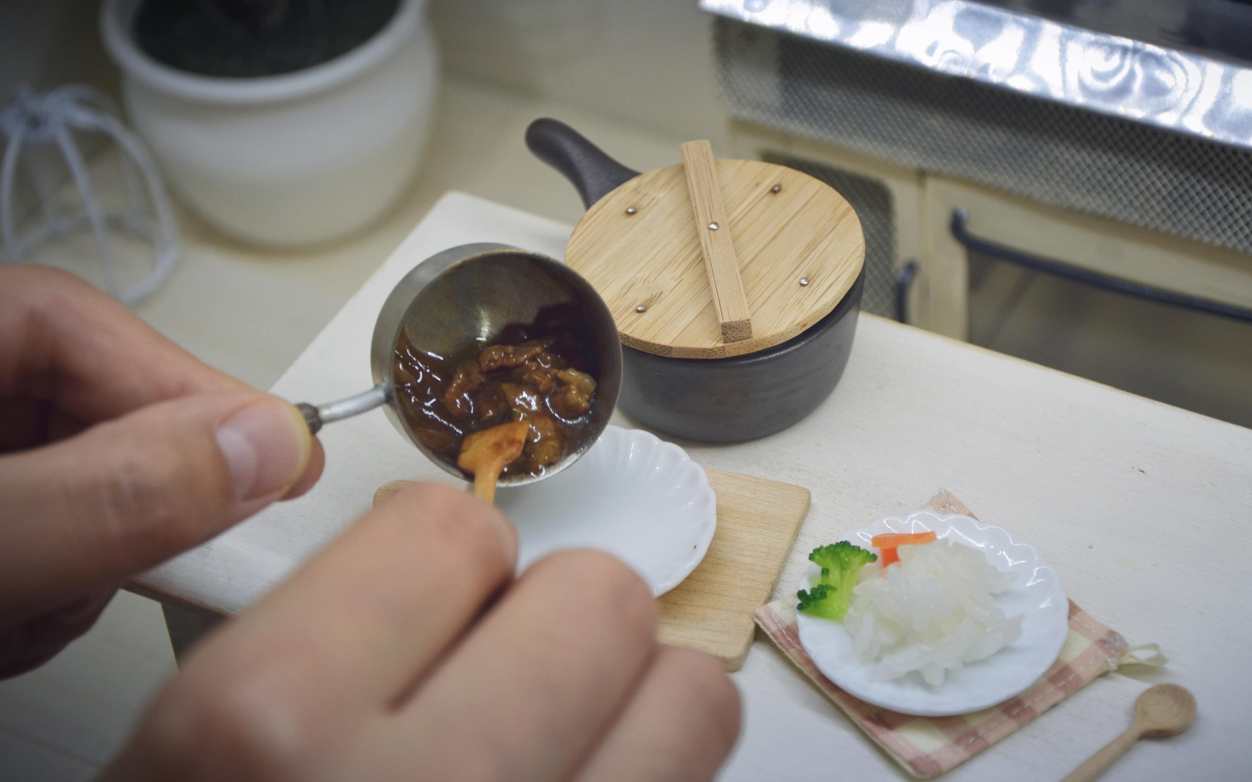 q小菲虾-迷你烹饪迷你食玩【在迷你厨房里学做菜】—日式牛肉饭图片