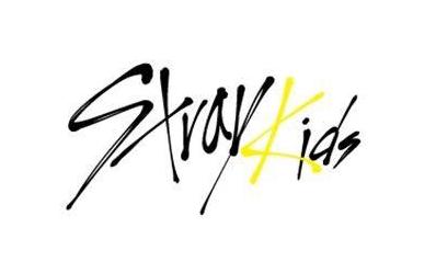 【Stray Kids】[港湾搬运] SKZ-PLAYER 合集