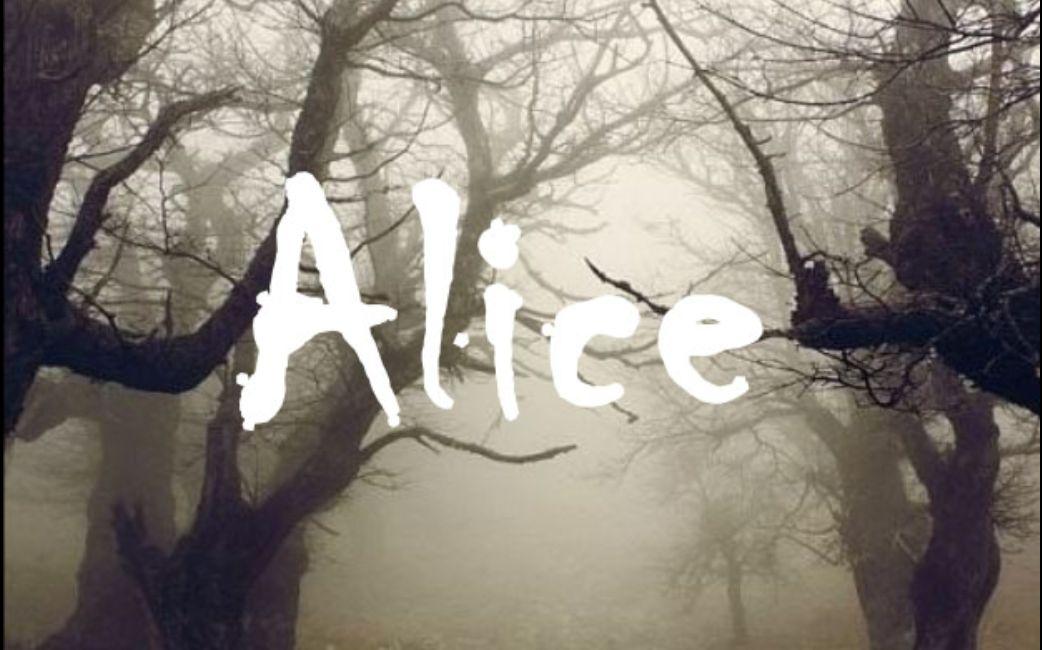 【无疆】Alice 世界上最孤独的鲸鱼