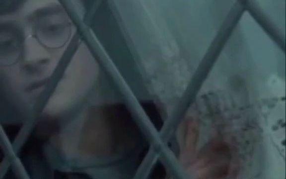哈利波特删减片段 个人认为是哈利波特电影最令人遗憾的删减,你们认为呢?
