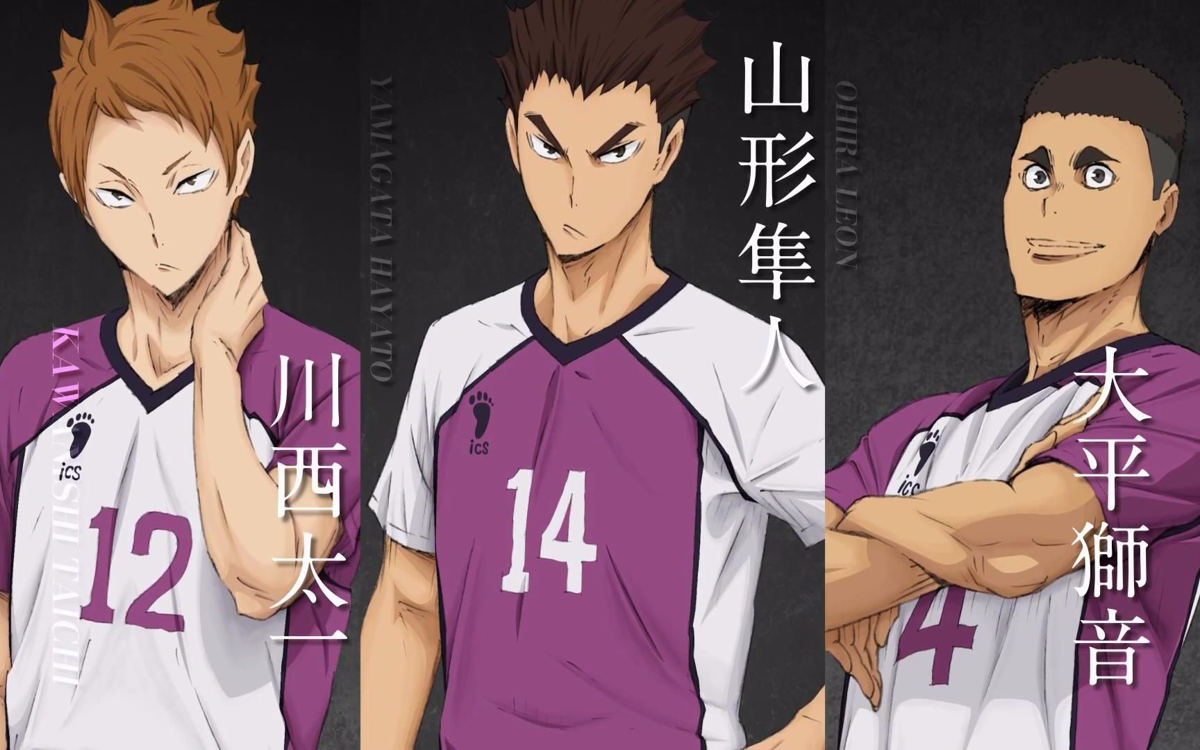 【10月】排球少年!! 乌野高校 VS 白鸟沢学园高校 PV2