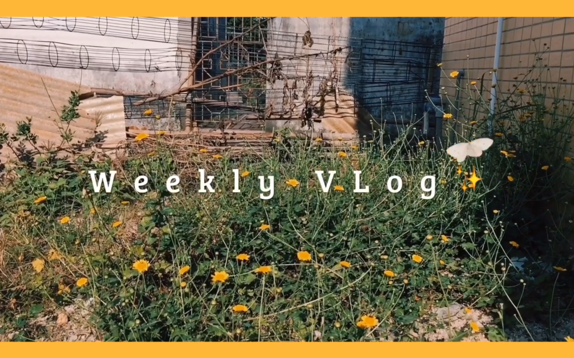 *Weekly VLog / Enjoy your life. Jam的一周小事件/希望你也快乐