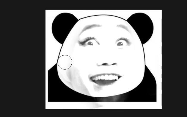 熊猫表情包的制作图片