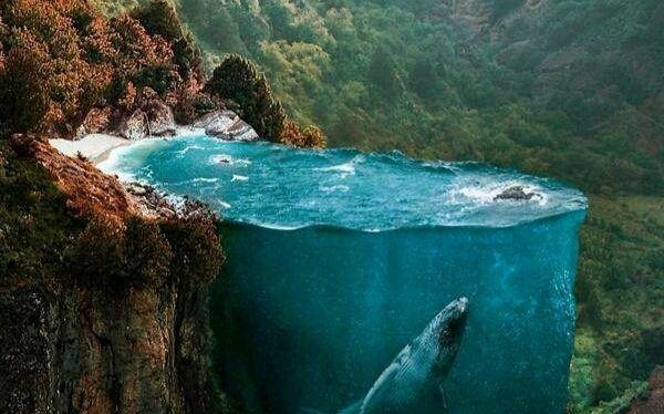 厉害了!土耳其艺术家脑洞大开,创造出绝美梦境!