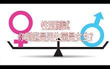 性别测试——你到底是男生还是女生(中文字幕)