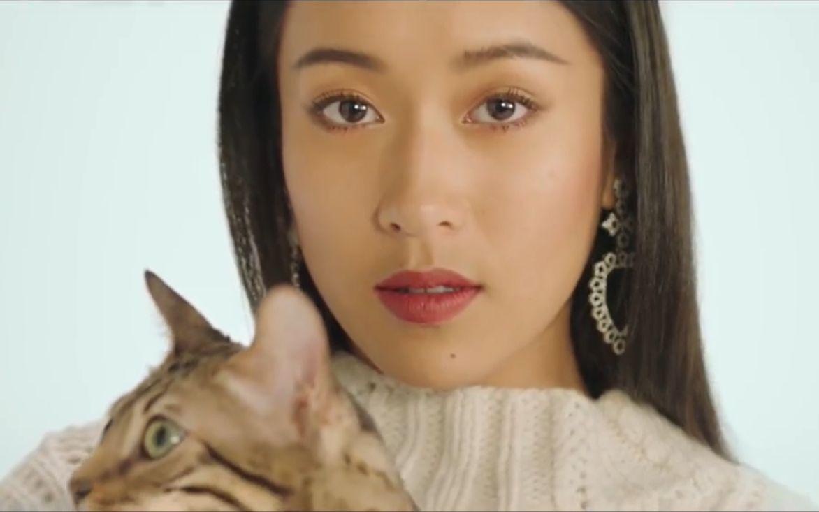 进来感受吉克隽逸的颜 我的猫 官方1080P无水印MV