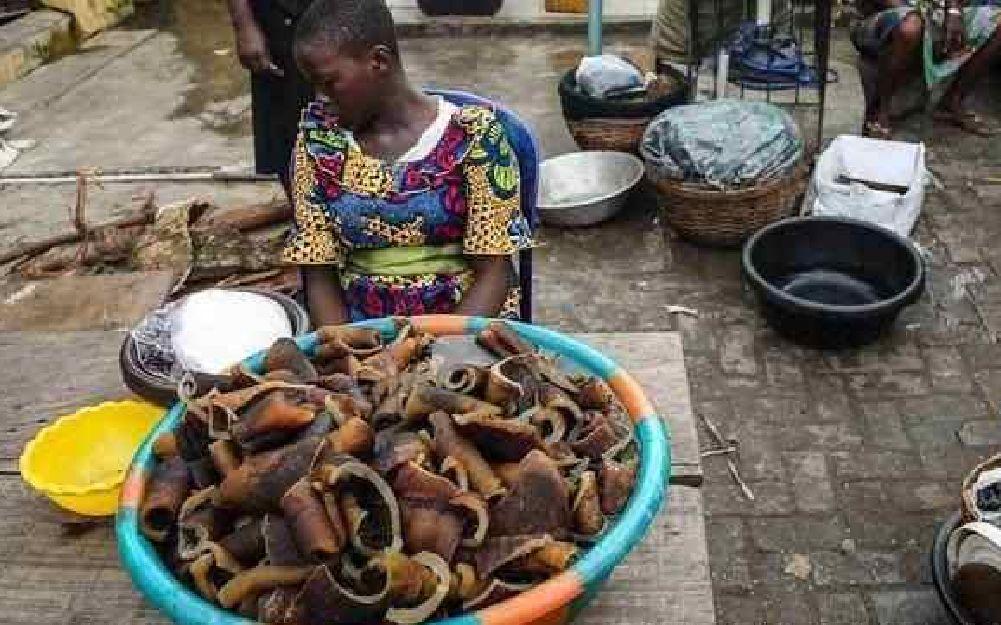非洲人眼中的垃圾,在中国人眼中就是美食,派一个厨师去他们吧!