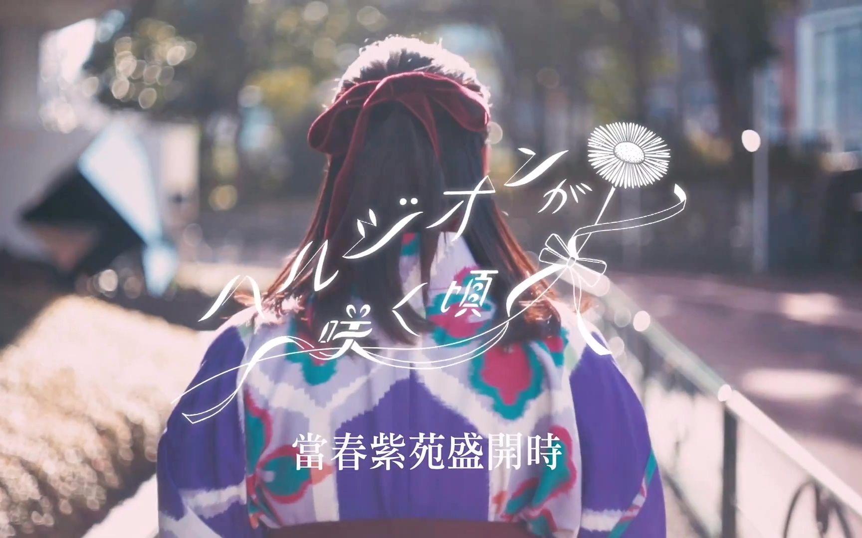 【乃木坂46】当春紫苑盛开时 - sony music官方中字