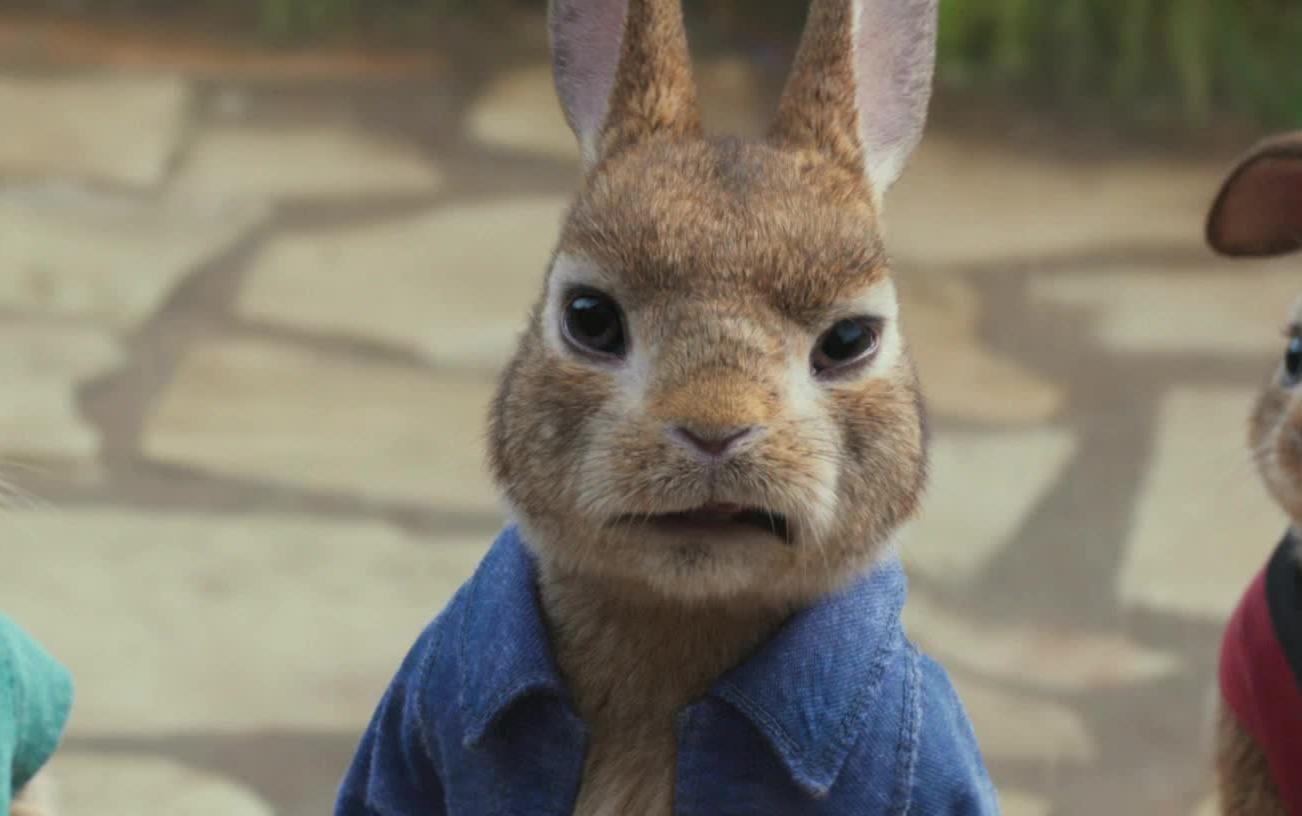 【1080p】人兔跃上战银幕最火红东西大作大全球《比得仓鼠热天气不爱吃兔子正常吗图片