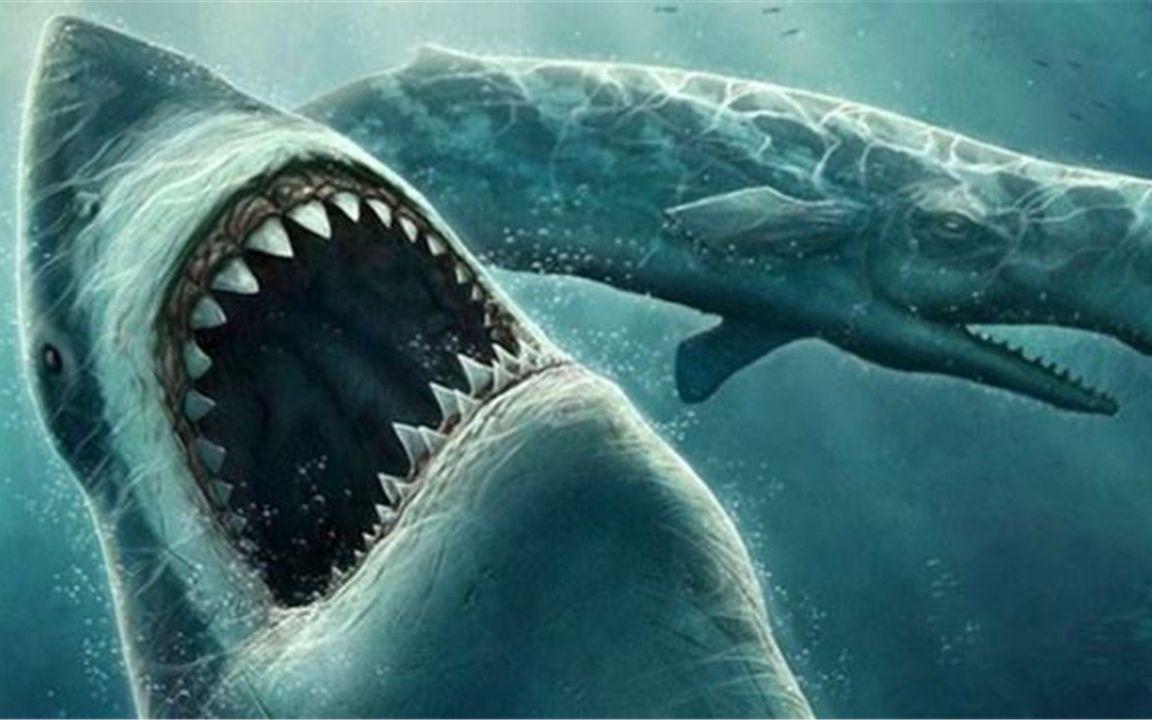 鲨血浴囹�a_拥有血盆大口的鲨鱼,一口把鱼咬两半,差点咬烂钓鱼船