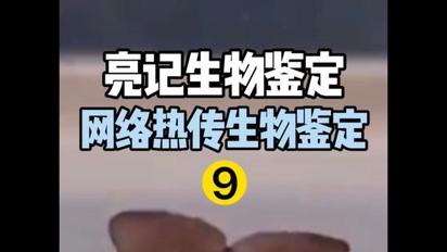 【亮記生物鑒定】近期網絡熱傳生物鑒定9