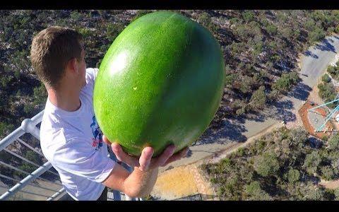 【实验-高空抛物】把西瓜从15楼扔下,能徒手接得住吗?(没加中字)@Wayne字幕组