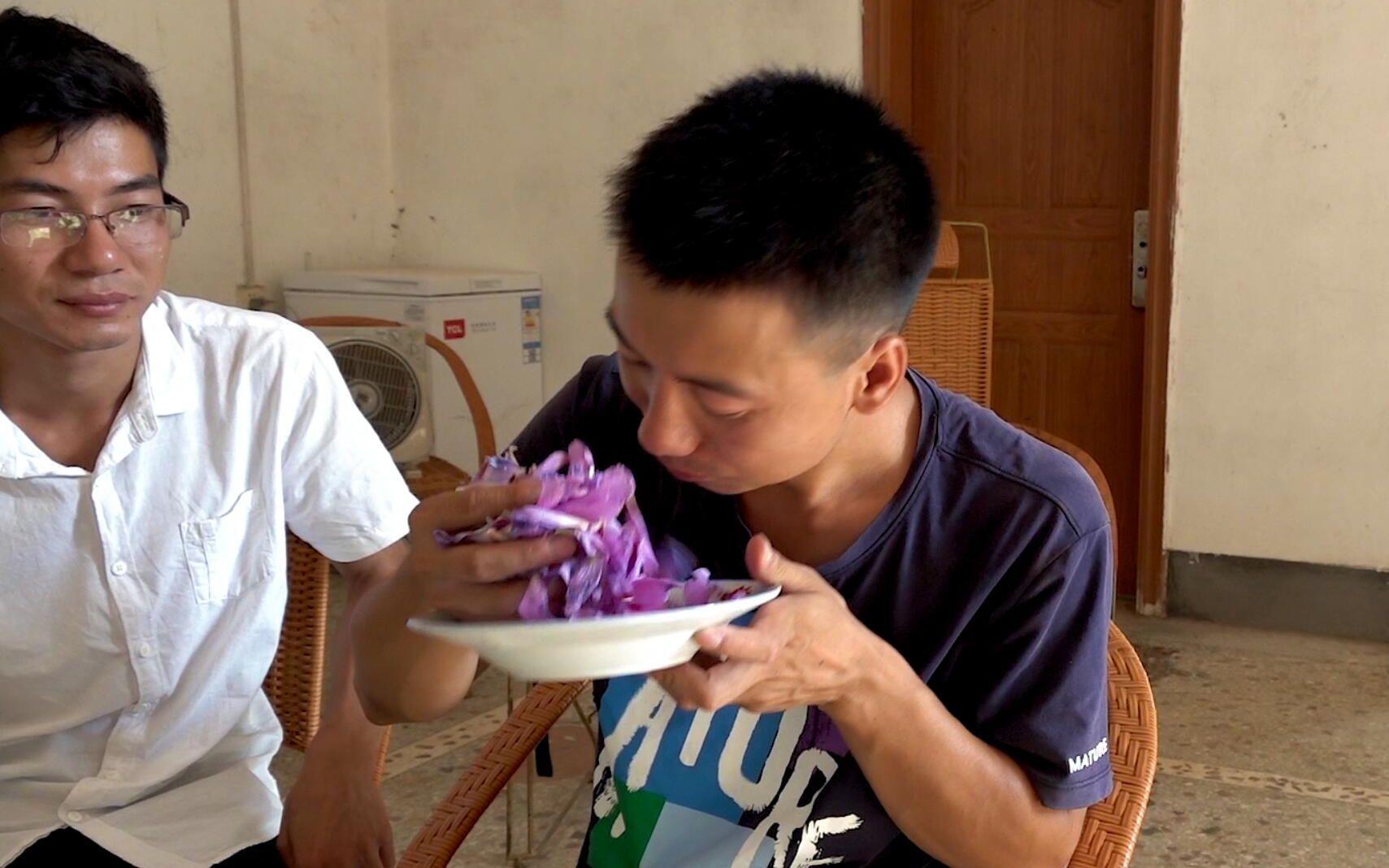 华农兄弟:没菜吃了,摘点木槿花来煎,味道还不错哦