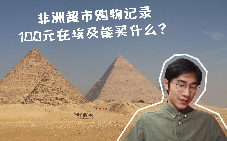 非洲生活/开罗大学交换生/疫情期间100元能在埃及超市买到什么?