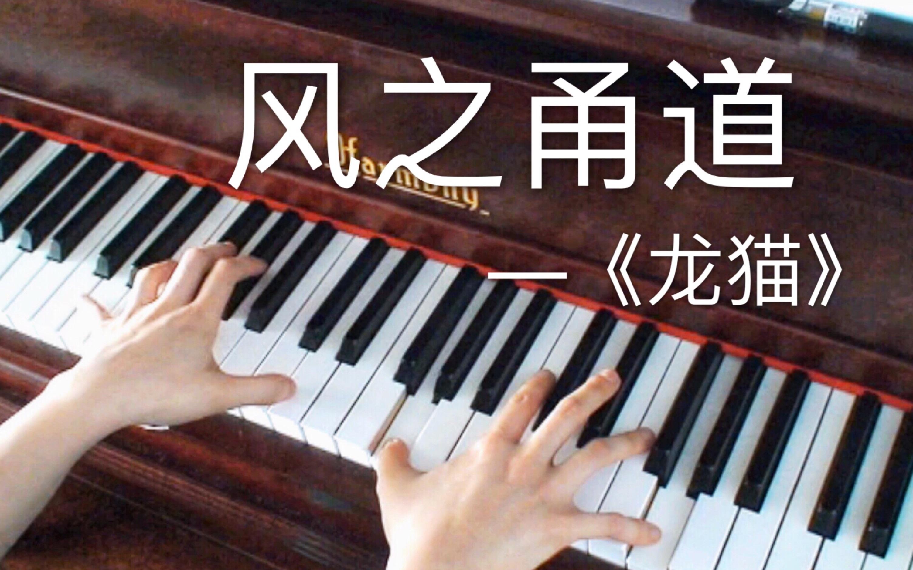 【钢琴】风之甬道(《龙猫》插曲)