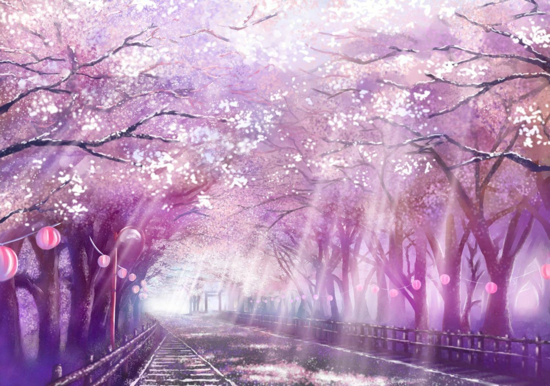 推荐10部有樱花的动漫场景瞬间美哭