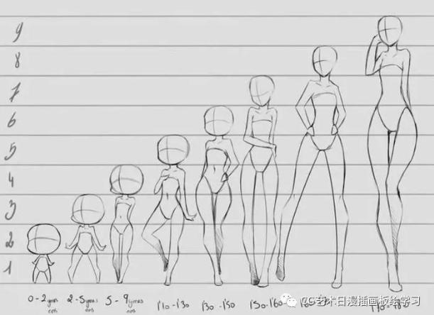 人体比例_【绘画教程】教你怎么画好人体,超详细的人体线稿,比例教程,看完你