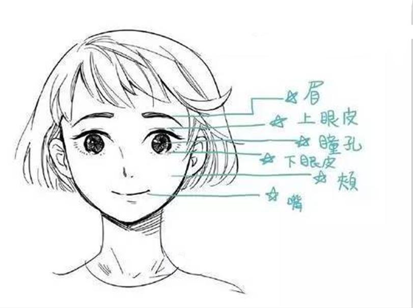 在漫画表情绘制中,眉毛,眼睛,嘴巴以及周围牵扯的肌肉才是表情绘制图片