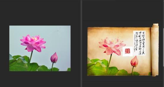用ps把字体拍摄的中国效果制作成荷花风的影楼一般数码设计照片图片