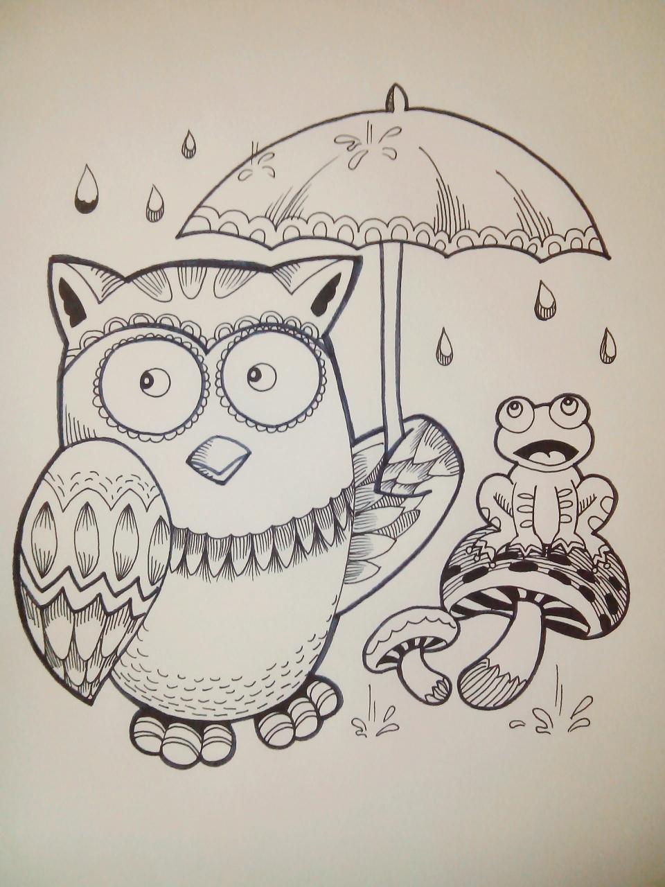 雨天,猫头鹰为一只青蛙撑伞