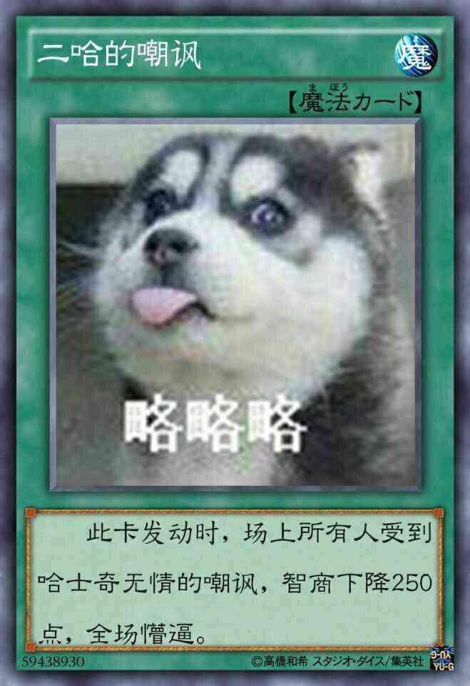 游戏王表情组表情萌小信阿和尚包微图片