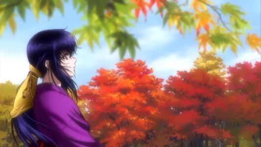 甲贺弦之介与伊贺胧,一对爱恋中的恋人,却因为宿命卷入两族的仇杀.