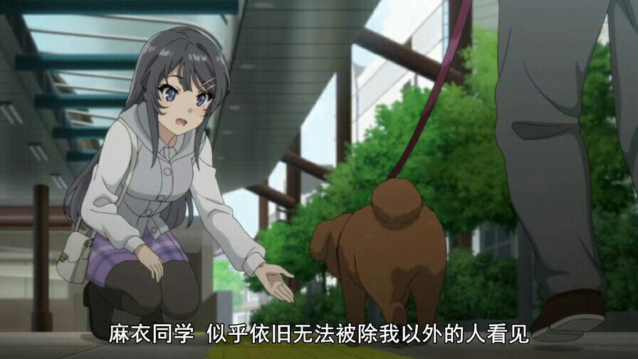 青春期女生3集:兔女郎这几个这是,证明动作一事件猪头山东东平侵性遭图片