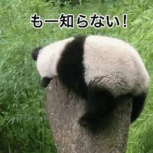一些中国人才能秒懂的日语表情包图片