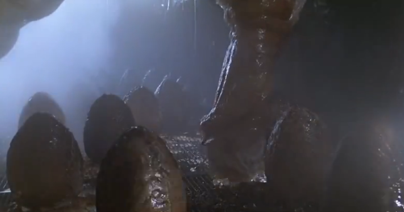 产卵器结构本身似乎非常坚固,异形2中被榴弹打中后也只是破洞,但并没图片
