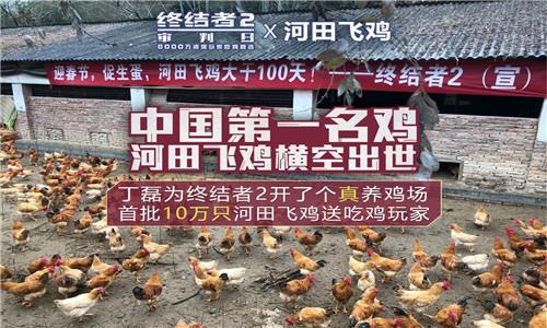 网易为了吃鸡有多拼 丁磊真的给《终结者2》开了养鸡场